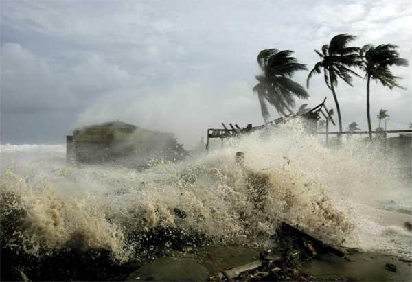 Сонник ураганы